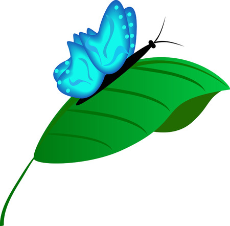The beautiful blue butterfly on a green leaflet Stock Vector - 8915686