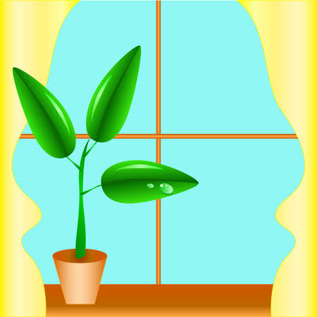 window sill: Flowerpot on a window sill, a window with yellow curtains Illustration