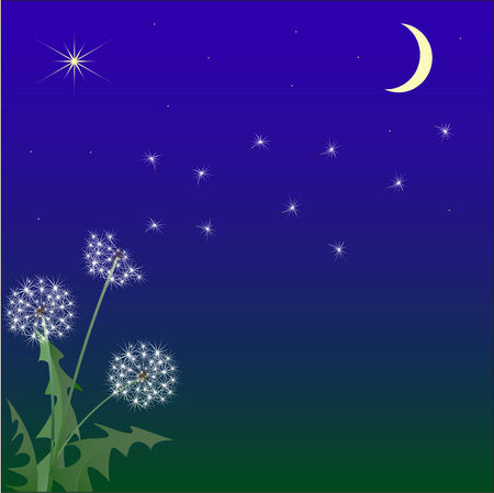 Flight of a dandelion against the night sky Vector