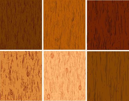 tarima madera: De las estructuras de madera de razas diferentes de un �rbol Vectores