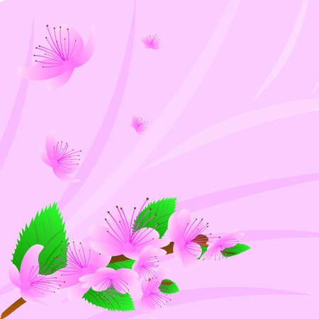 Spring tree in the pink  blossom, a branch with colors Vector