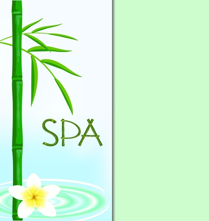 pamper: The invitation in SPA-salon, a bamboo in water, a flower