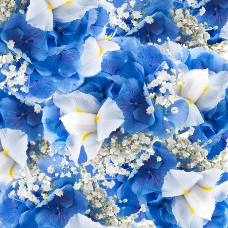 blue flowers: Flowers in a bouquet, blue hydrangeas and white irises Stock Photo