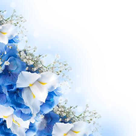 Flowers in a bouquet, blue hydrangeas and white irises Stok Fotoğraf