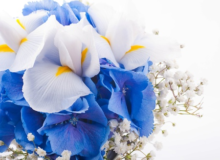blue flower: Flowers in a bouquet, blue hydrangeas and white irises Stock Photo