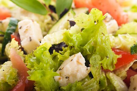 Salad from fresh green-stuffs and cheese with spices Stock Photo - 15657499