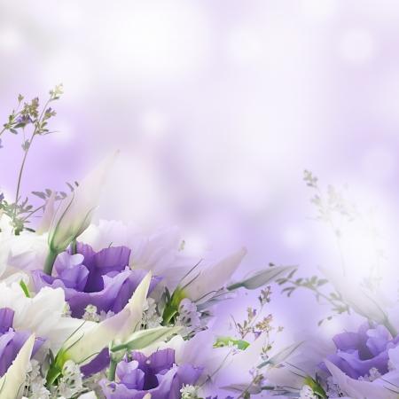 flores moradas: Nupcial ramo de flores blancas y rosadas