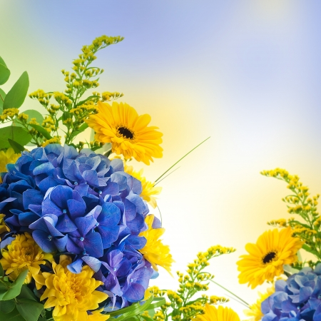 purple iris: Bouquet from blue hydrangeas and yellow asters, a flower background Stock Photo