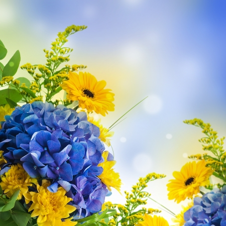Bouquet from blue hydrangeas and yellow asters, a flower background Stock Photo