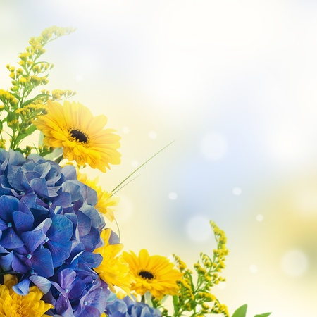 Bouquet from blue hydrangeas and yellow asters, a flower background photo