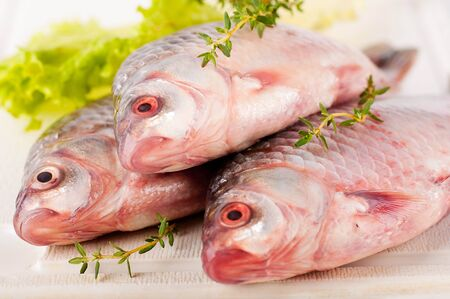 Raw European carp with a thyme and lemon, living fish Stock Photo - 16976726