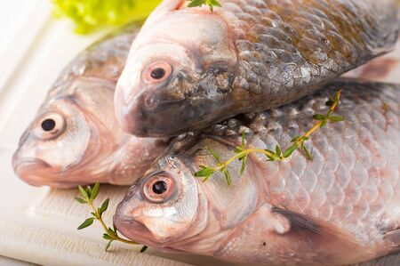 water thyme: Raw European carp with a thyme and lemon, living fish