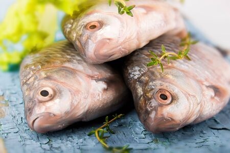 Raw European carp with a thyme and lemon, living fish Stock Photo - 16976728