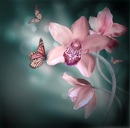 Orchideeën met een vlinder op de gekleurde achtergrond