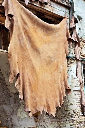 ammonia: Las f�bricas de cuero marroqu�es, artesan�a antigua medina de Fez