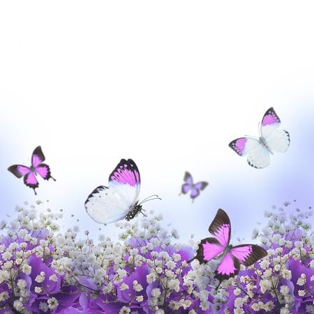 butterfly on flower: Flowers in a bouquet, blue hydrangeas and butterfly