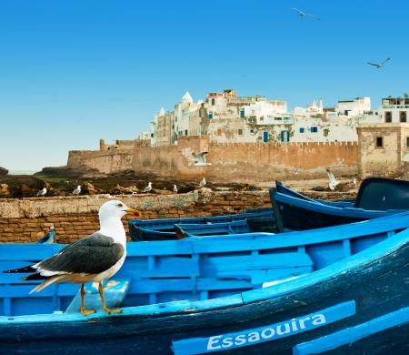 dieren: Blauwe vissersboten op een oceaan kust in Essaouira, Marokko Stockfoto