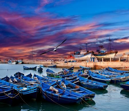 Blauwe vissersboten op een oceaan kust in Essaouira, Marokko
