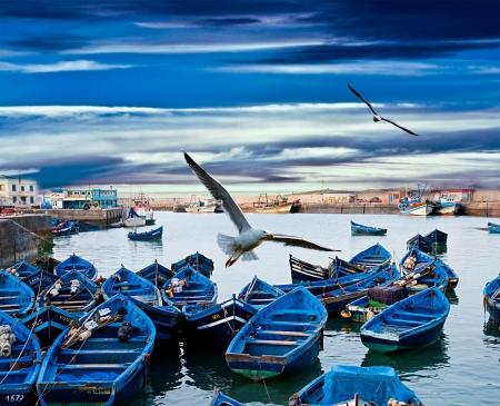 Blue fishing boats on an ocean coast in Essaouira, Morocco