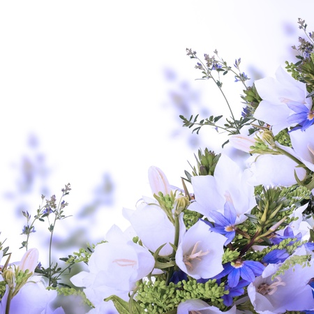 Bouquet of white and blue bells on a white background photo