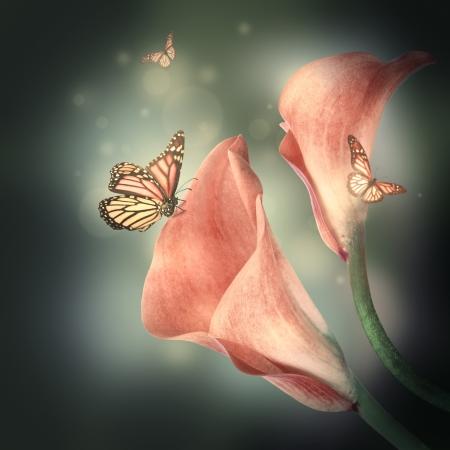 複数の色のユリと、暗い背景に蝶