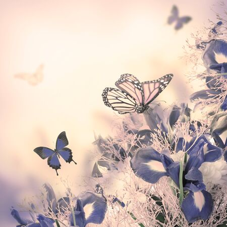 Blumenstrauß Aus Blauen Iris, Weißen Blumen Und Schmetterling ...