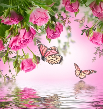 Bouquet of delicate roses and butterfly, floral background photo