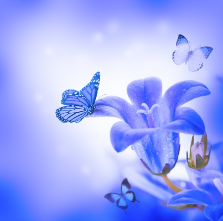 Flowers on a white background, dark blue hand bells and butterfly