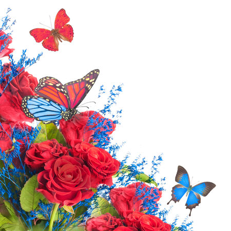 A bouquet of red roses, floral background and  butterflies photo