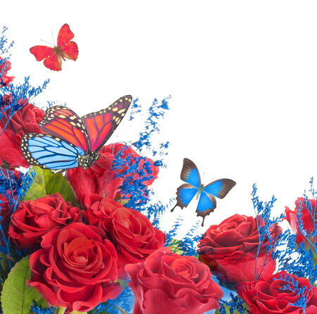 A bouquet of red roses, floral background and  butterfly photo