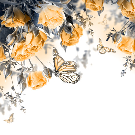 butterfly on flower: Bouquet of delicate roses and butterfly, floral background