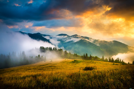 táj: Csodálatos hegyi táj köd és a szénakazalban