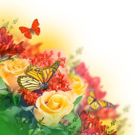 Bouquet of yellow roses, butterfly Stockfoto