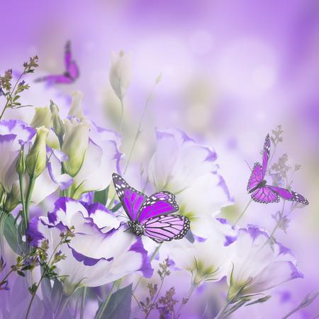 Boeket van delicate rozen en vlinder, bloemen achtergrond