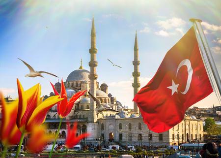 Istanbul the capital of Turkey, eastern tourist city. Stok Fotoğraf - 50033992