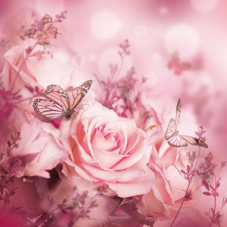 Mooie rozen en vlinder, bloem, bloemen achtergrond
