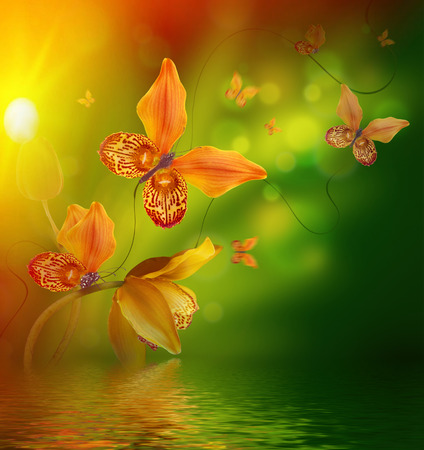 Amazing butterflies from the petals of orchids, floral background. Flowers and insects. Stock Photo