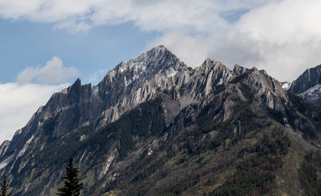Pine trees line the outer edges of a tall and rocky mountain in Banff National Park, Alberta, Canada.