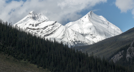 Sister peaks covered with snow in Jasper National Park, Alberta, Canada.