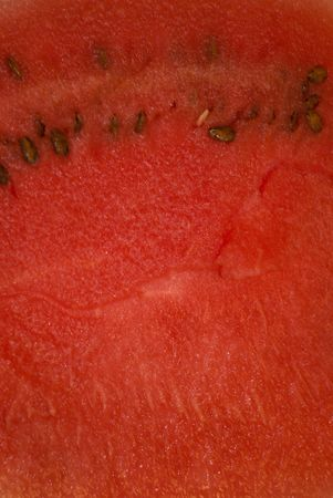 Ripe water-melon Stock Photo