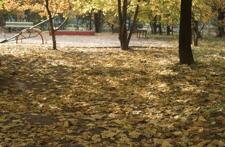 La plus belle saison