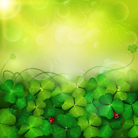 St. Patricks Day card with clovers. Ilustrace