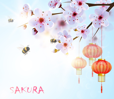 Spring background with japan cherry flowers and red lanterns. Illustration
