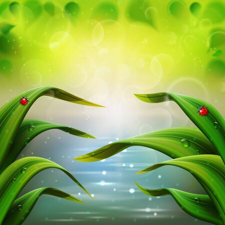 Bright spring background with grass and water illustration.