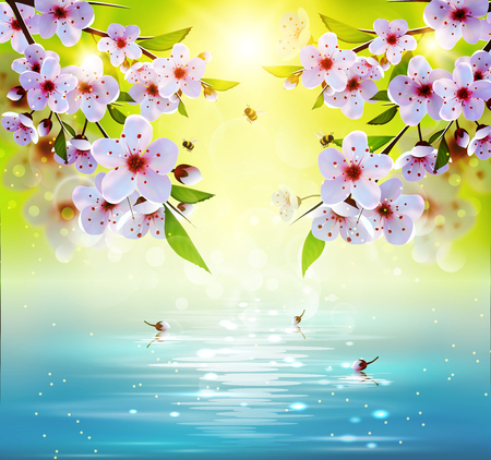 Spring background with japan cherry flowers and lake.