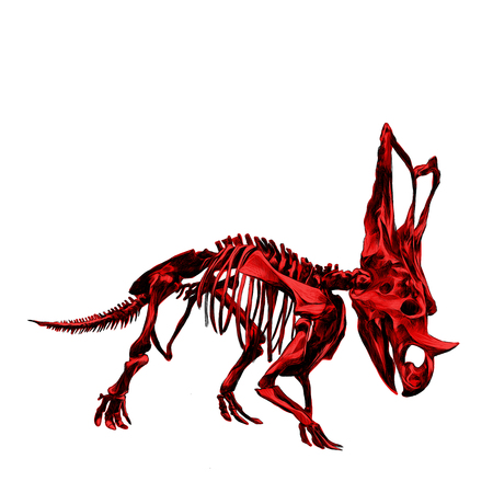 triceratops: The skeleton of the red dinosaur Triceratops, colored drawing red dice, sketch vector.