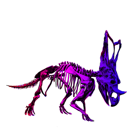 The skeleton of the purple dinosaur Triceratops, color image, color gradient; red, pink and blue colors, sketch vector. Illustration