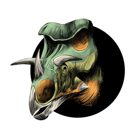 The head of a dinosaur breed of Triceratops, peeks out from behind the black circle, color image, color orange and green.