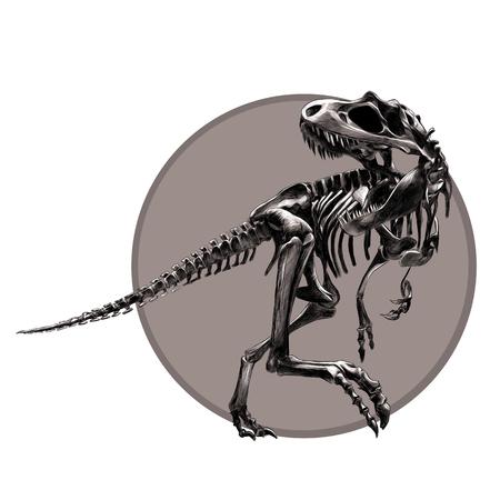 Dinosaur skeleton Tyrannosaurus, black and white pattern on the grey circle , drawing, sketch, vector.