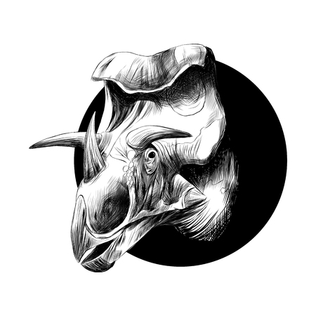 The head of a dinosaur breed of Triceratops, peeks out from behind the black circle, the black-and-white drawing.